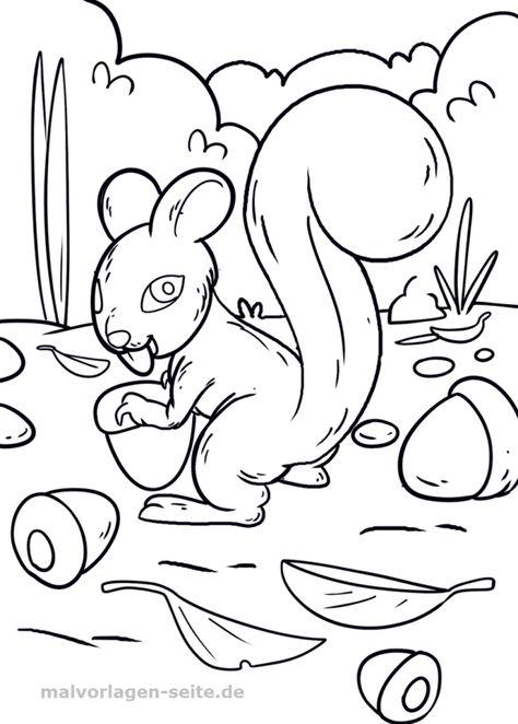 Malvorlage Eichhörnchen Ausmalbilder Malvorlagen und