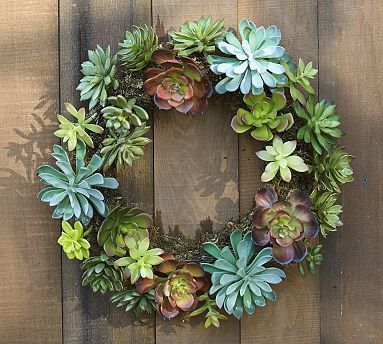 Faux Succulent Wreath #potterybarn    They sell the succulents at BB Barnes in Hendersonville......