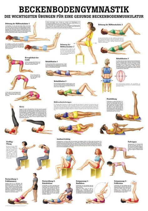 Beckenbodengymnastik - Rüdiger AnatomieBeckenbodengymnastik - - Poster (24cm x 30cm) - Lehrtafel (70cm x 100cm) jeweils aus hochwertigem Papier