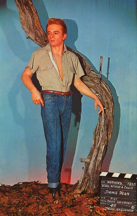 """JAMES DEAN in """"REBEL WITHOUT A CAUSE""""  Movieland Wax Museum Buena Park, California"""