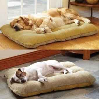 Cheap Imixlot Pet Cat Dog Dasin Cat Dog Bed Intlitem Is Really Good Imixlot Pet Cat Dog Dasin Cat Dog Bed Intl Ratings Oe702otaa8vlgcsgamz 17735172 Pet Supp