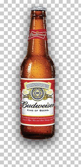 Budweiser Beer Anheuser Busch Lager Bottle Png Budweiser Beer Beer Budweiser