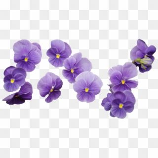 64 Images About Flower Png On We Heart It Purple Flower Bouquet Png Transparent Png Flower Bouquet Png Flower Png Images Blue Flower Png