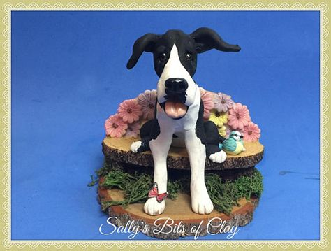 Ready To Ship Mantle Great Dane Dog With Natural Ears Mantle