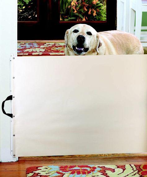 Retractable Pet Gate | zulily
