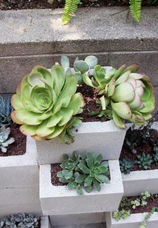 succulent initial planter diy eco Pinterest Suculentas, Cactus - como hacer una jardinera
