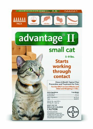 Advantage Ii For Small Cats 5 9 Lbs By Bayer 12 Month Supply Small Cat Cats Flea Treatment