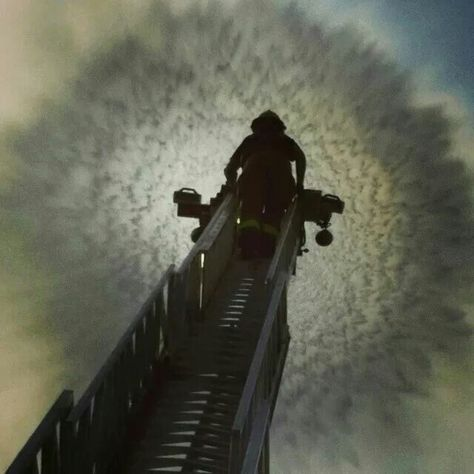 World Trade Center 9//11 Rescue Dog On Escalator Silver Halide Photo
