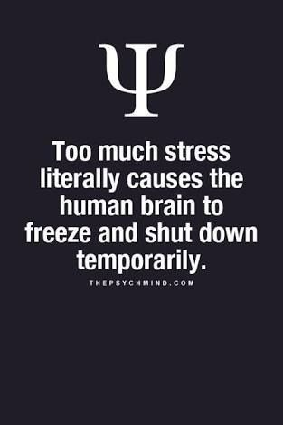 Too Much Stress Literally Causes The Human Brain To Freeze And Shut Down Temporarily Psychologicalfactshu Psychology Quotes Psychology Facts Psychology Says