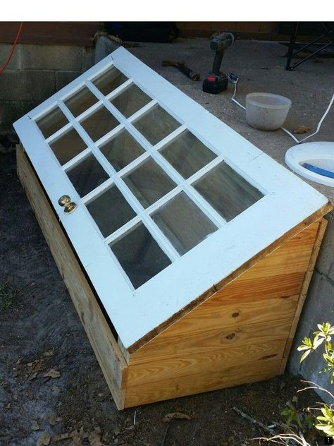 A green house made using a old door. DIY greenhouse 2019 A green house made using a old door. DIY greenhouse The post A green house made using a old door. DIY greenhouse 2019 appeared first on Flowers Decor. Diy Mini Greenhouse, Diy Greenhouse Plans, Greenhouse Gardening, Greenhouse Wedding, Cold Frame Gardening, Cheap Greenhouse, Greenhouse House, Portable Greenhouse, Old Window Greenhouse