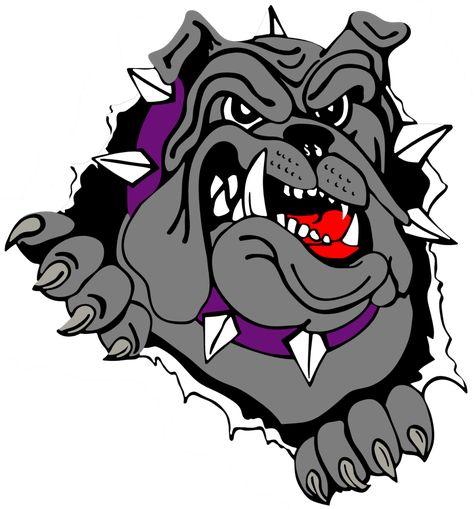 football bulldog drawing vector of a competitive cartoon bulldog rh pinterest co uk Bulldog Clip Art Bulldog Drawings