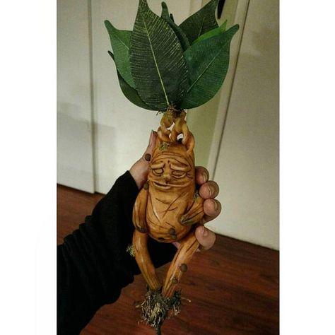 Mandrake by ChrystalBrower on Etsy