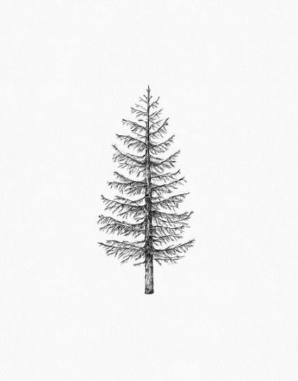 64 Ideas Pine Tree Tattoo Simple Small Tattoo Tree Pine Tree