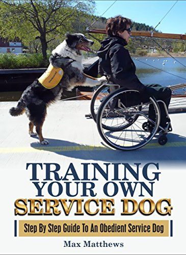Training Your Own Service Dog Step By Step Guide To An Obedient