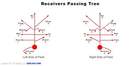 Passing Tree Youth Football Drills Flag Football Plays Youth