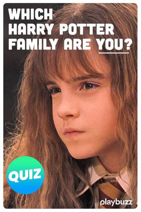 Which Harry Potter Family Are You? | Everything Harry Potter