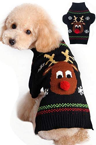Matching Ugly Christmas Sweaters For Dog And Owner.Pinterest