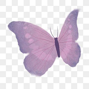 Ilustracao Dos Desenhos Animados De Borboleta Azul Preta Borboleta Clipart Borboleta Preto Azul Borboleta Voadora Imagem Png E Psd Para Download Gratuito In 2020 Butterfly Illustration Blue Butterfly Butterfly Watercolor