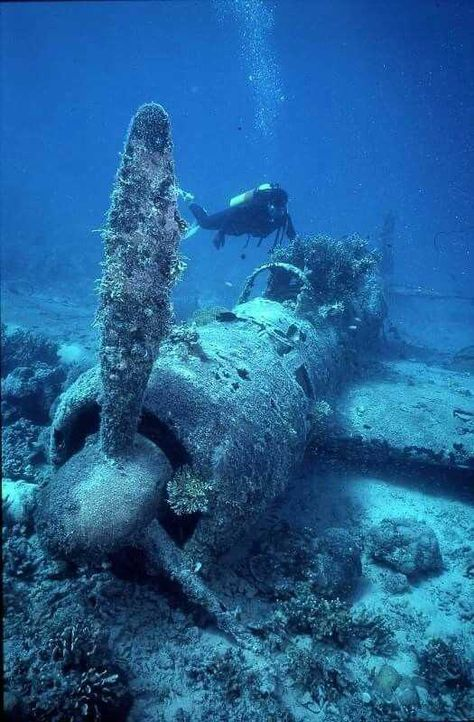 Tagged with ocean; There are more planes in the ocean Underwater Ruins, Underwater Photos, Underwater World, Underwater Photography, Underwater Shipwreck, Abandoned Ships, Abandoned Places, Ww2 Planes, Deep Sea