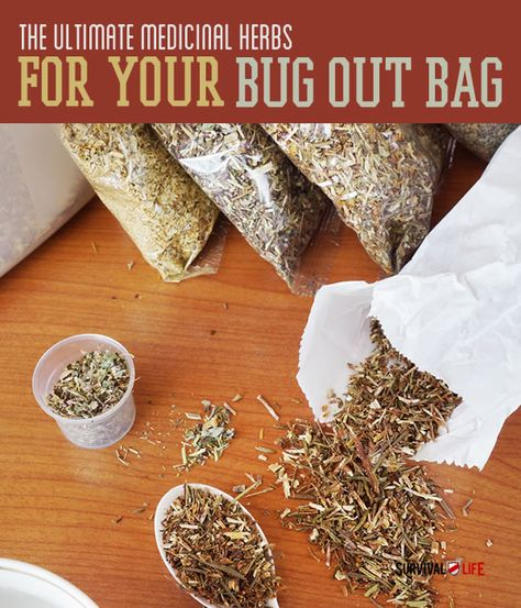 The Top 5 Ultimate Medicinal Herbs For Your Bug Out Bag