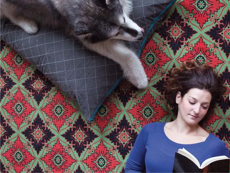 Our Best Advice This Year on Sharing Your Home With Pets — Best of 2014 | Apartment Therapy