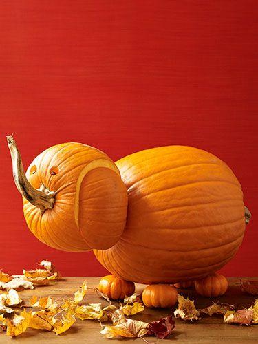 Friendly Elephant Pumpkin Carving Idea