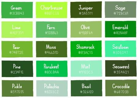 Stock Vector Green Color Chart Green Color Names Different