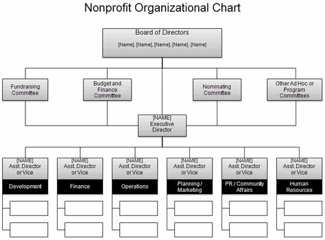 Image result for non profit organizational chart spca strategic - non profit organizational chart