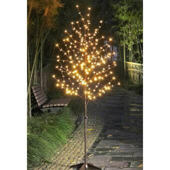 Pre Lit Light Star Tree 240 Light Led Lighted Tree Reviews Tree Lighting Solar Hanging Lanterns Lighted Tree Branches