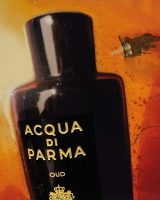 Acqua Di Parma Colonia Oud Special Edition 2018 Perfume News Perfume Popular Perfumes Romance Perfume
