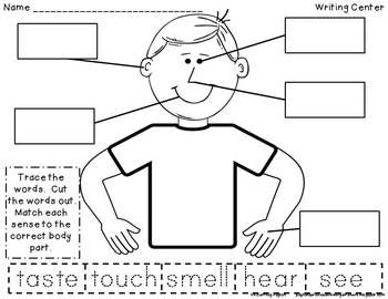 5 senses diagram label application wiring diagram neptune beckford neptunebeckford on pinterest rh pinterest com ear diagram tongue taste areas diagram ccuart Image collections