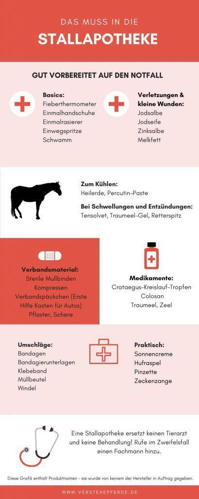 Das Muss In Die Stallapotheke Pferde Verstehen In 2020 Pferdepflege Reiten Lernen Verbandsmaterial