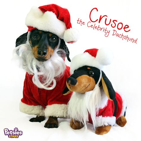 43efb703ff4e Crusoe the Celebrity Dachshund Santa Clause Plush   Custom Stuffed Animal   Custom  Plush Dachshunds   Doxie Plush   Gifts for Doxie Lovers