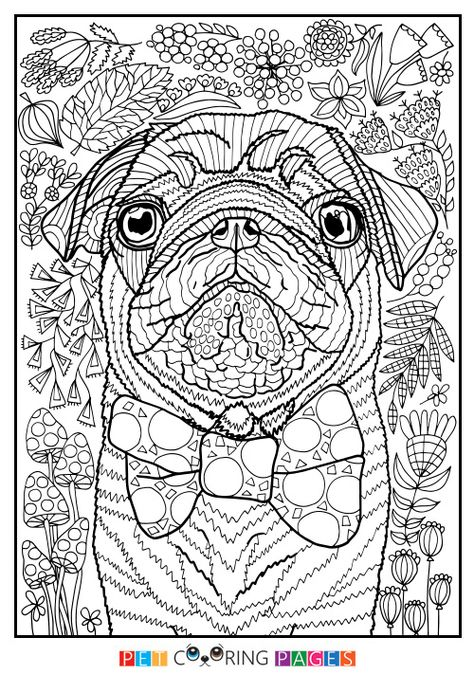 Pin By Kathleen Jensen On Coloring Pages Animal Coloring Pages Dog Coloring Page Dog Coloring Book