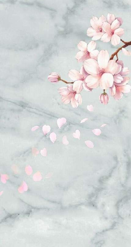 67+ trendy wall paper iphone flowers phone backgrounds cherry blossoms #flowers #wall