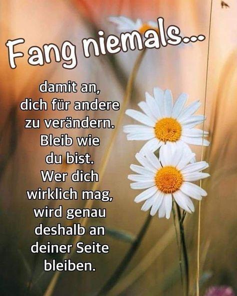 Habt einen schönen Nachmittag, ihr Lieben! ☕😊 Und... bleibt, wie ihr seid! 💛😘 - #bleibt #einen #habt #ihr #lieben #Nachmittag #schoenen #seid #und #wie