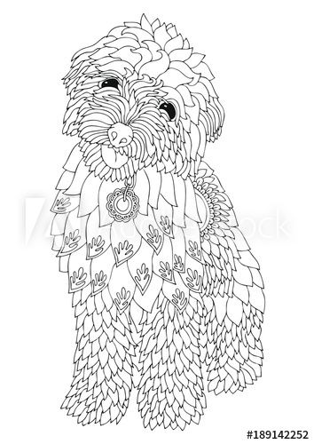 Golden Doodle Hand Drawn Dog Sketch For Anti Stress Adult
