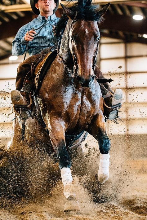 Cute Horses, Pretty Horses, Beautiful Horses, Equine Photography, Animal Photography, Western Photography, Action Photography, Reining Horses, Western Riding