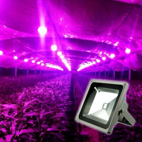 Led Plant Grow Light,led plant flood light ,Plant Grow Light Flood Lamp