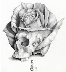 "Drawings of Skulls and Roses   Skull Rose"" by Bret Zarro 2009"