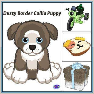 Dusty Border Collie Puppy Collie Puppies Border Collie Puppies Webkinz