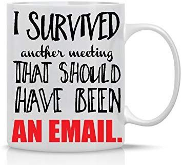 Amazon Com I Survived Another Meeting That Should Have Been An