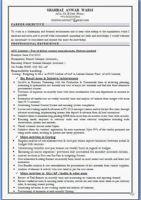 curriculum vitae examples free Sample Template Example of