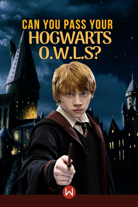 Quiz: Can You Pass Your Hogwarts O W L S? in 2019 | Dhwani
