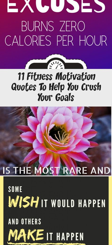 GET MOVING and STAY MOTIVATED with these inspiring fitness quotes! You'll be amazed at how just a few motivational words can completely boost your energy! All quotes are beautifully designed so that you'll enjoy looking at them over and over again!   fitness motivation   fitness inspiration   fitness motivation quotes   inspring quotes   how to stay motivated   health and fitness motivation   workout quotes   fitness goals   #fitnessmotivation #fitnessinspiration #fitnessgoals #HealthandFitnessC