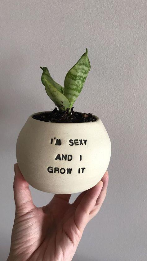 I Make Ceramic Planters With Sassy Botanical Puns (18 Pics)