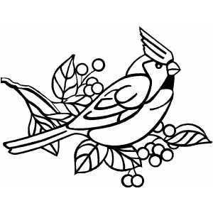 Christmas Cardinal Coloring Pages Coloring Pages Bird Coloring Pages Christmas Coloring Pages