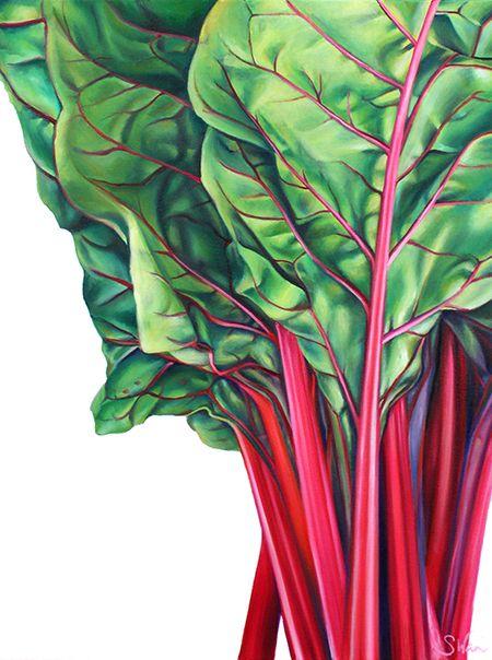 Chard Sarah E Wain Watercolor Food Illustration Food Painting Painting