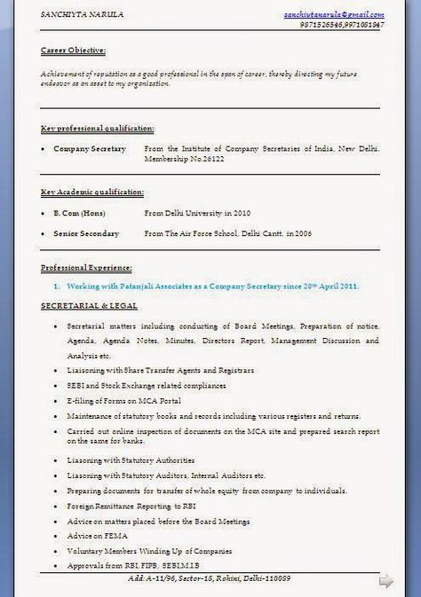 Chronological Resume Templates Beautiful Excellent Professional