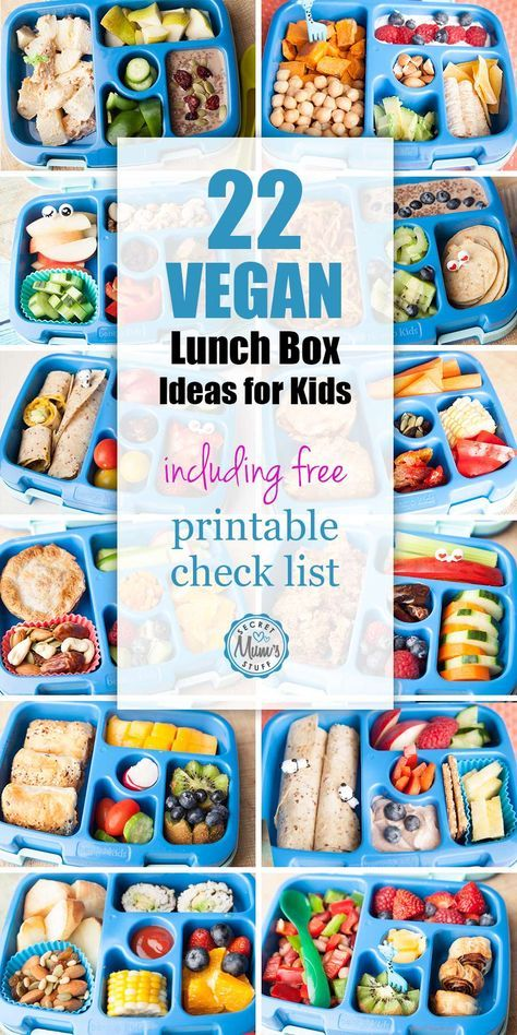 22 Vegan Kids Lunch Box Ideas For Little Kids Looking For Plant Based Ideas For Your Little Ones Lunch Vegetarian Kids Lunch Vegan Lunch Box Plant Based Lunch